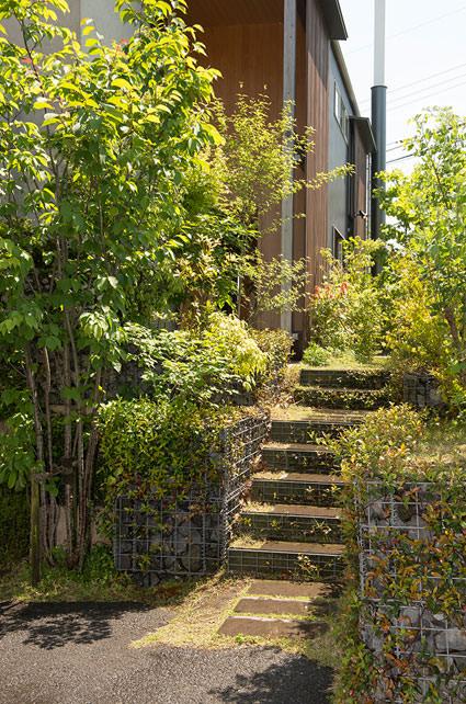 STEP1緑のアプローチ